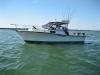 boat-3_new.jpg