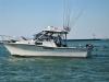 boat-8_new.jpg