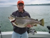 huc-2010-spring-brown-trout.jpg